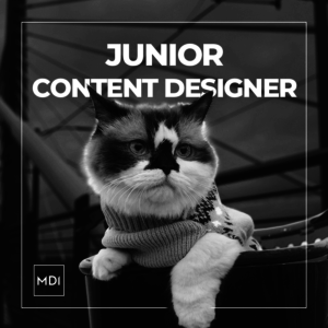 Junior Content Designer Trend Researcher